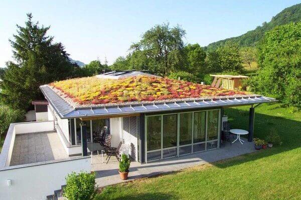 Dach z trawy Śląsk